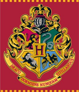 Koc Harry Potter 120x150